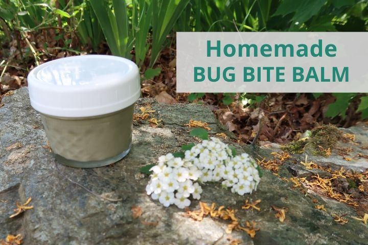 homemade bug bite balm next to a flower