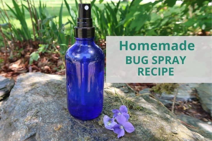 Homemade Bug Spray (That Really Works!)