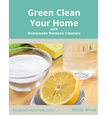 Green Clean Your Home Free Guide