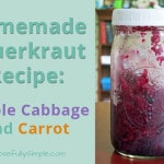 Homemade Sauerkraut: Purple Cabbage and Carrot