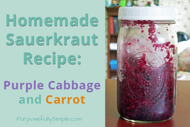 This homemade sauerkraut recipe is loaded with beneficial bacteria, vitamins, and antioxidants. It's incredibly simple to make and inexpensive too.