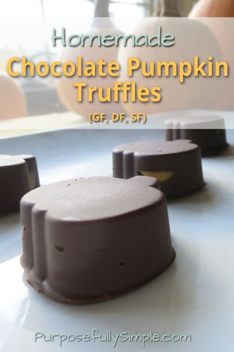 Homemade chocolate pumpkin truffles recipe purposefully simple try these chocolate pumpkin truffles in place of yucky gmo conventional candy theyre forumfinder Choice Image