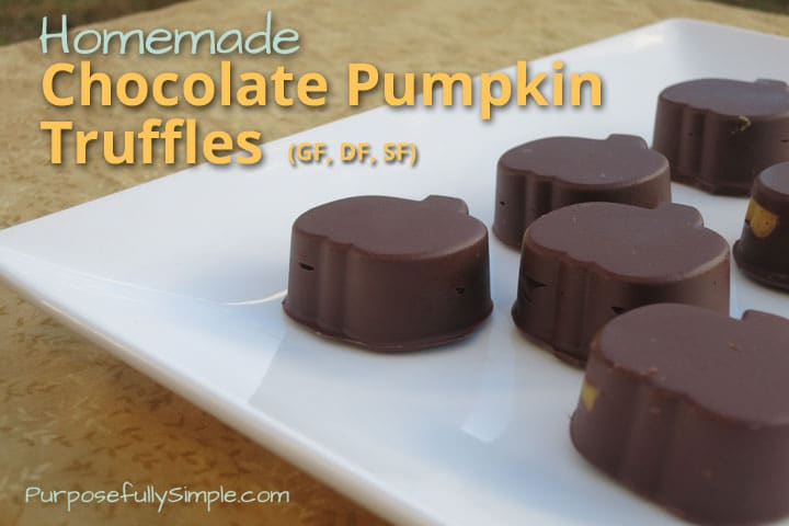 Homemade Chocolate Pumpkin Truffles Recipe