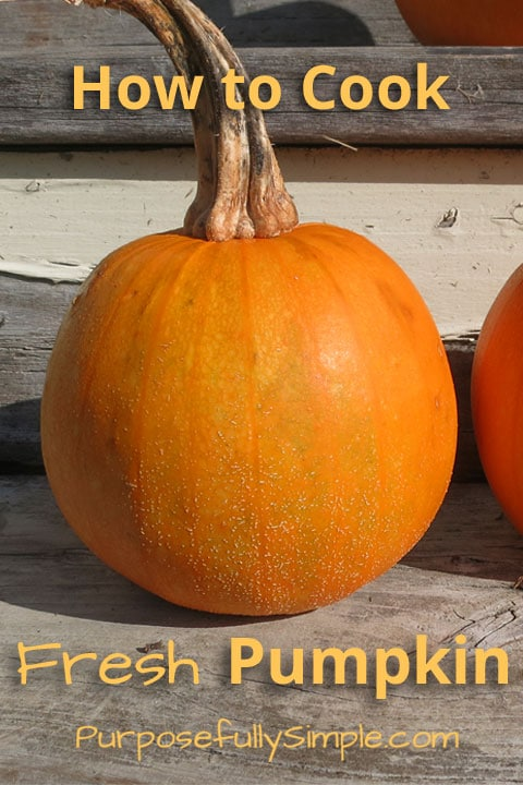 Wondering how to cook fresh pumpkin? It's easy. Find out the best way to cook a pumpkin for making homemade pumpkin puree.