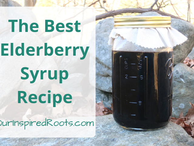 This elderberry syrup recipe is simple to make and will help protect your family from illness all winter. Find out how to make it at home for pennies. #elderberrysyrup