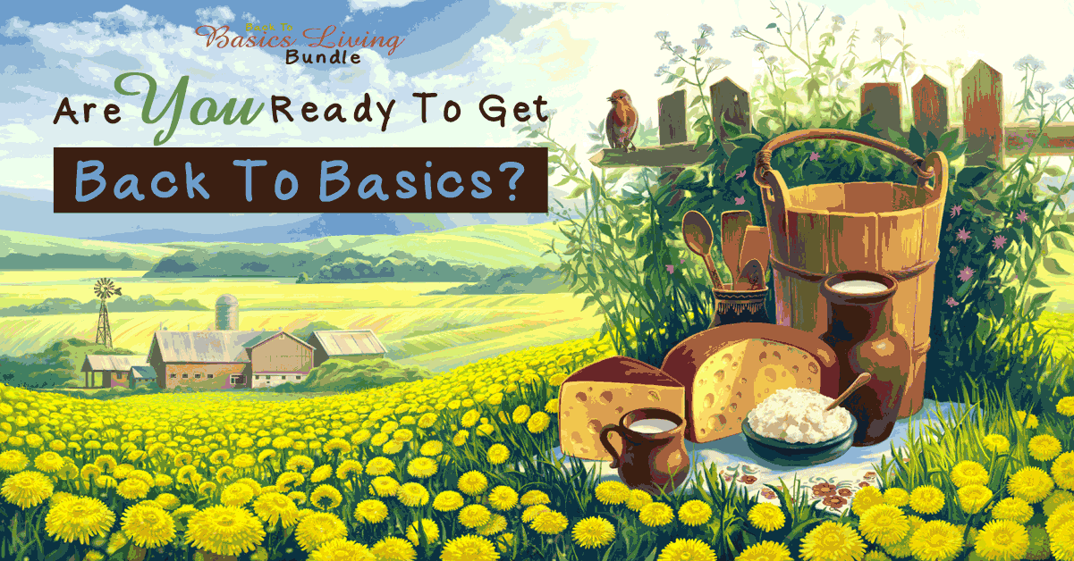 'Back to Basics' Living Bundle: A Review