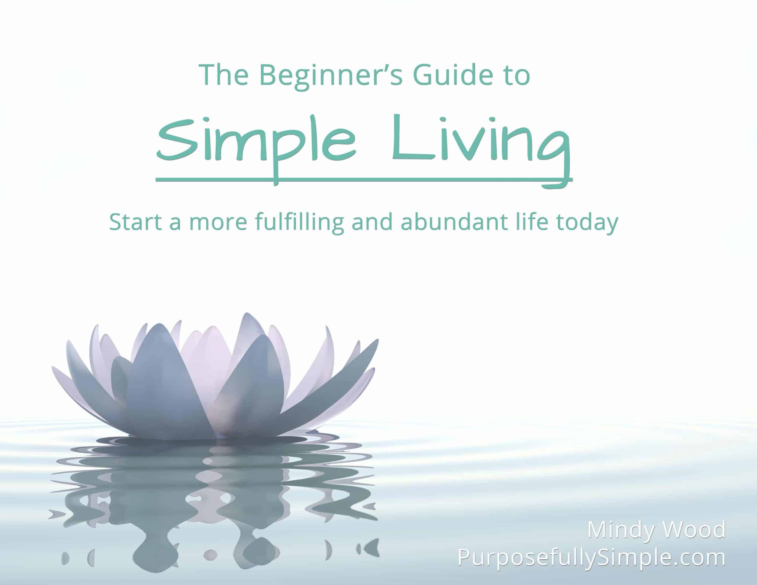 The Beginner's Guide to Simple Living (Free!)