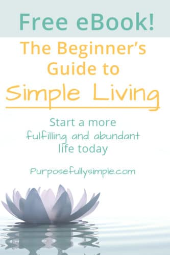 Grab this free eBook and learn how to begin your simple living journey today. Leave behind the rat race and join the movement of simple living.