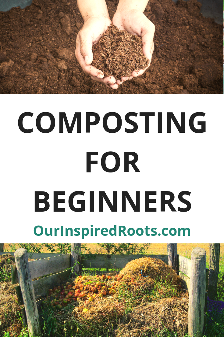 Wondering how to compost? It's pretty simple once you learn a few key tips for turning your kitchen scraps into plant food. Find out how easy it is! #compost