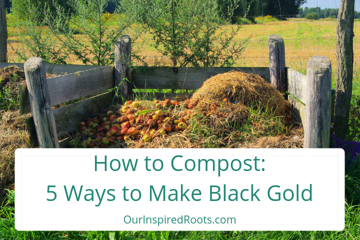 How to Compost for Beginners: 5 Easy Ways