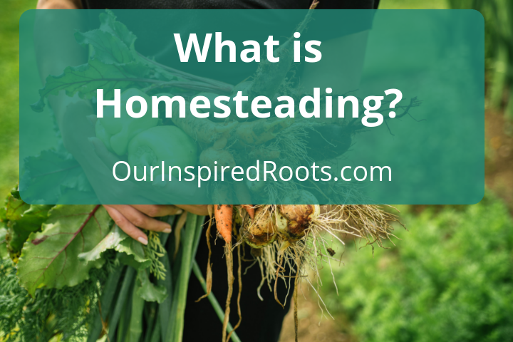 What is Homesteading? Why a Simple Life Matters And How To Get Started Now