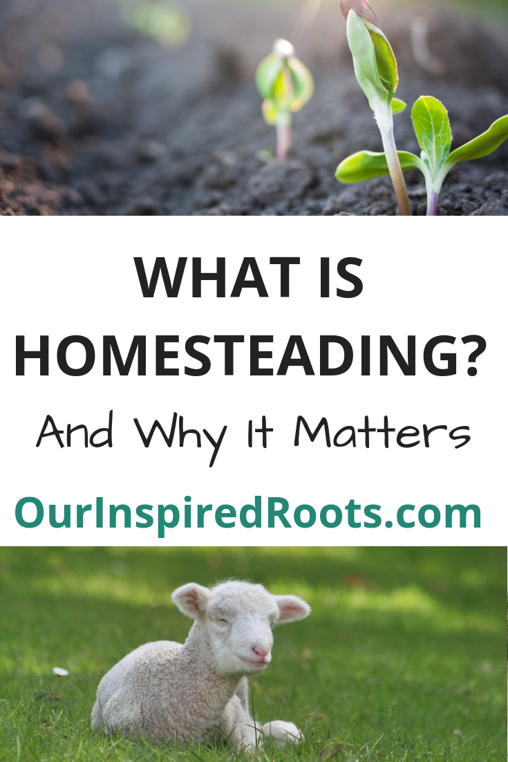 What is homesteading? It can mean a lot of different things. Find out what I think it means plus what a few of my homestead blogger friends think too. #homesteading