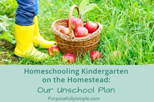 Homeschooling Kindergarten on the Homestead: Our Unschool Plan