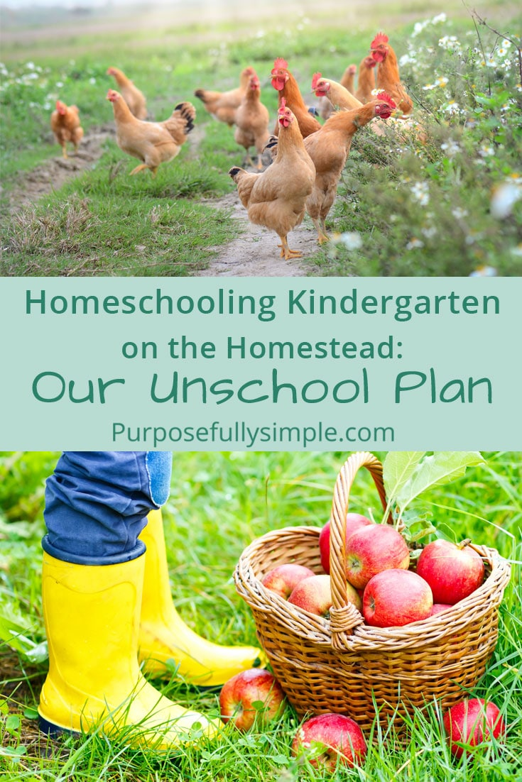 Wondering about homeschooling kindergarten? Take a look at how I plan my unschooling kindergarten year and see how easy it is to facilitate learning! #unschooling #homeschooling #homeschoolingonthehomestead