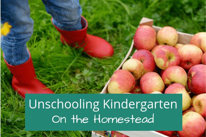 Homeschooling Kindergarten on the Homestead: Our Unschool Plan