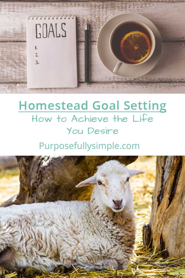 Homestead goal setting is vital for getting the life you want but how do you begin? I give you all of the tools you need to make those goals stick here. #homesteading #homesteadinggoals