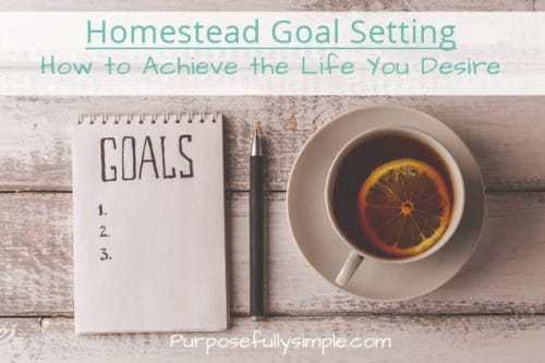 Homestead Goal Setting: How to Achieve the Life You Desire