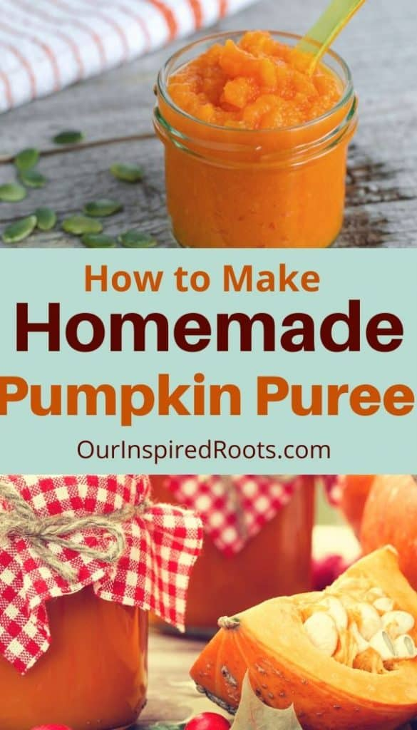 pumpkin puree in jar, cut pumpkin on table