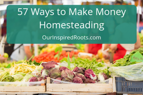 It's not that hard to make extra money homesteading, and you don't need land to do it! Here are 57 idea for making money from any homestead.