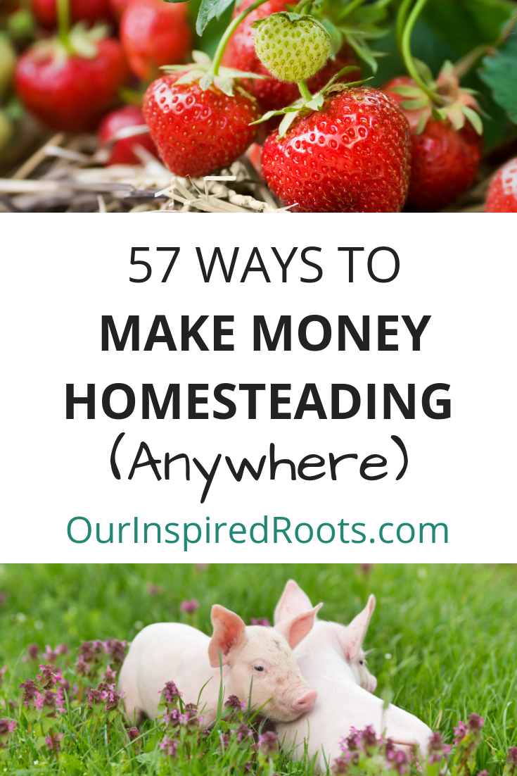 It's not that hard to make extra money homesteading. And you don't need any land! Here are 57 ideas for making money on any homestead.