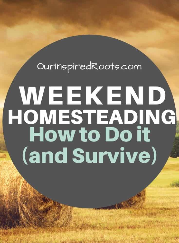 Finding Time to Homestead