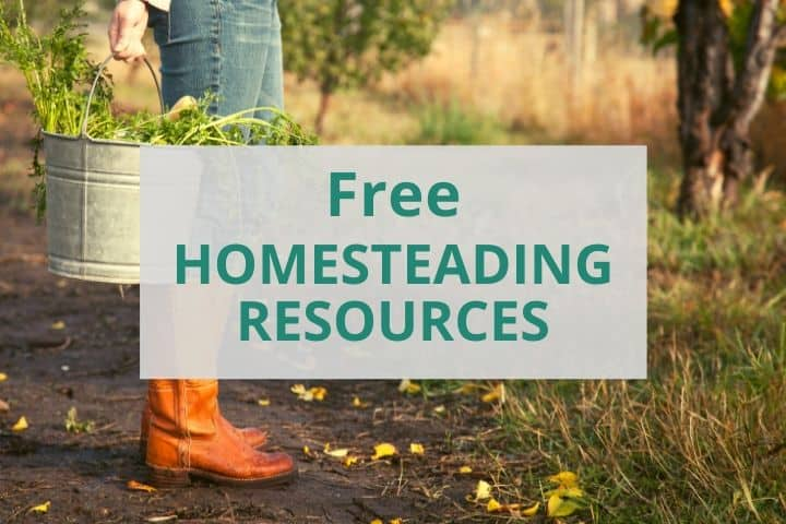 Free Homesteading Resources