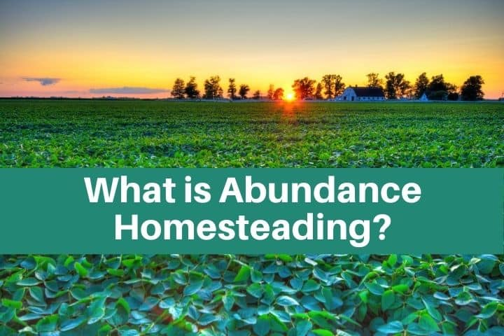 abundance homestead at sunset