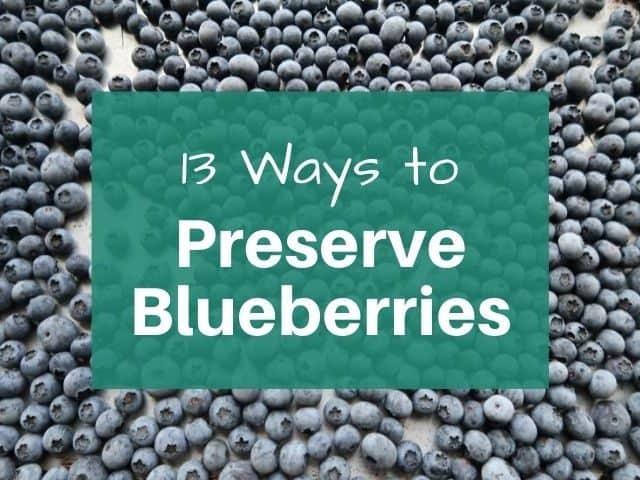 frozen blueberries on pan