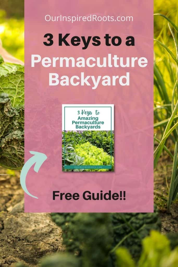 permaculture ebook