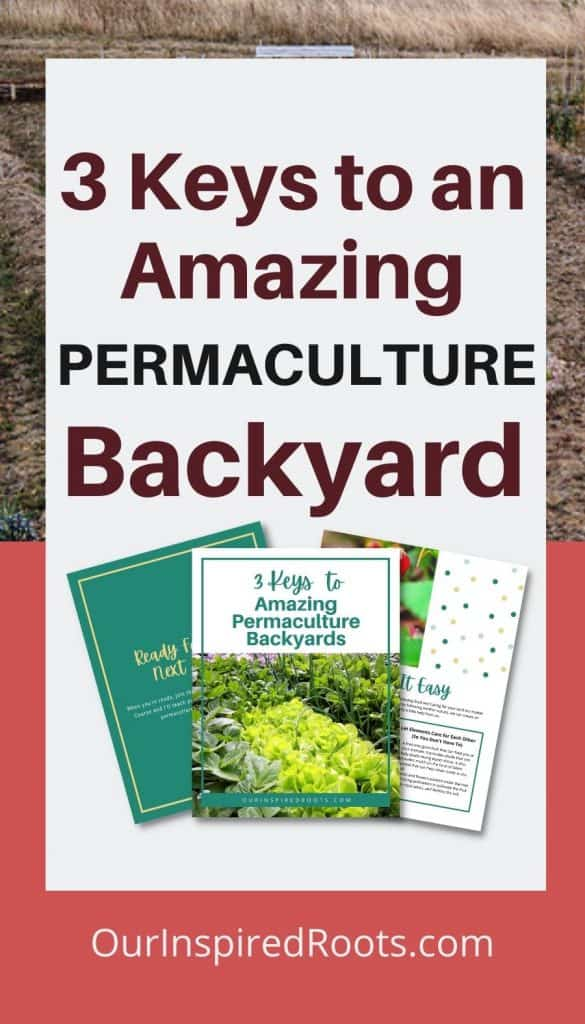 permaculture backyards freebie cover